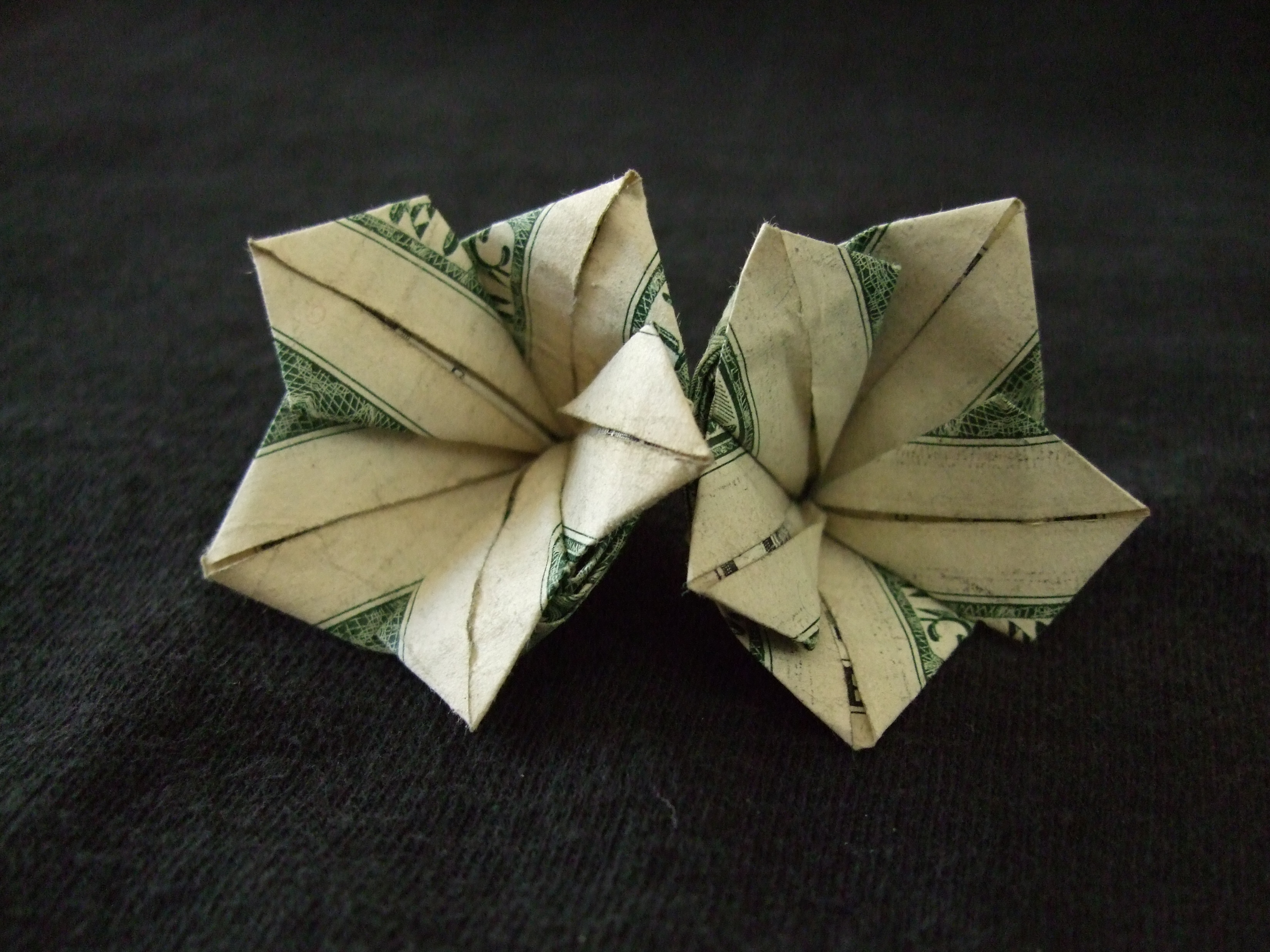 How To Make Origami Dollar Flower